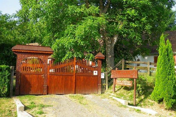 Ferienhaus Mákfa in Vasvar - Bild 1