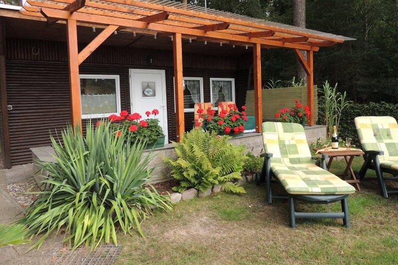 Ruhe,Natur,Urlaub - Ferienhaus Molchow