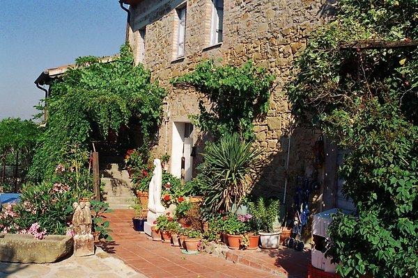 Villa La Rogaia:  Il Peperino à Passignano sul Trasimeno - Image 1