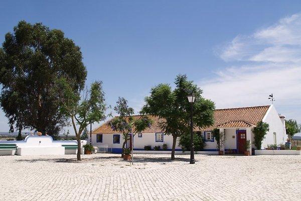 Maison d'hôtes à la ferme avec centre équestre à Évora - Image 1