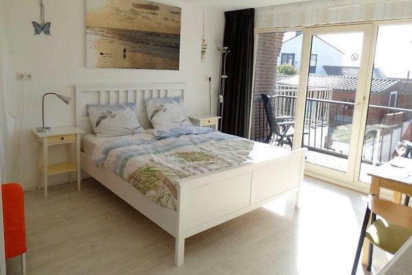Pension De Schelp (Studio #1)  à Zandvoort - Image 1