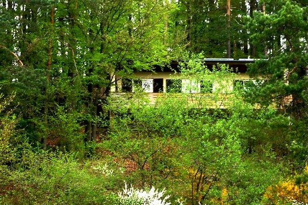 Ferienhaus Sonnhang à Obertrubach - Image 1
