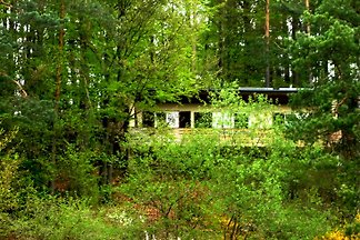 Ferienhaus Sonnhang