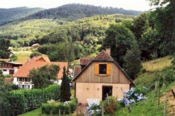 Haus les hortensias von wald rand aus