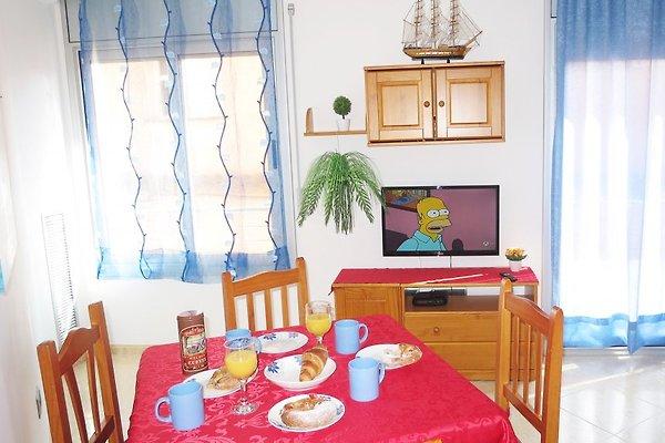 ANA III BEACH-CITY-apartment in Lloret de Mar - immagine 1