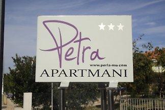 Grüne Apartment- Appartement Petra