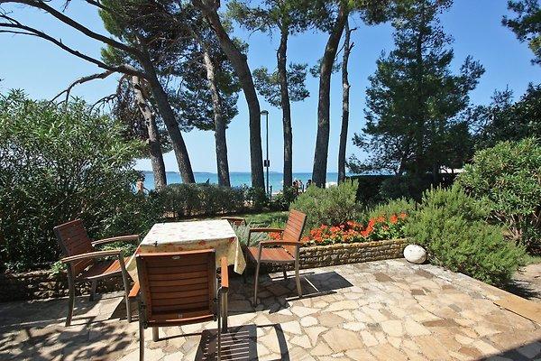 Casa 5 m de la playa de guijarros en Fažana - imágen 1