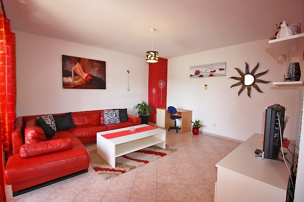 Appartement N.1 (5 + 1) 150 m vom Kiesstrand à Fažana - Image 1
