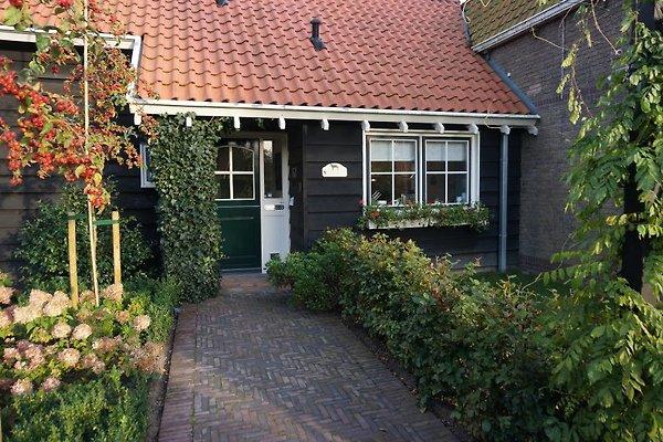 Duynzoom en Burgh Haamstede - imágen 1