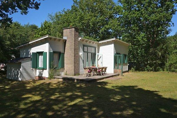 Berkenpad 7 à Nieuw-Haamstede - Image 1