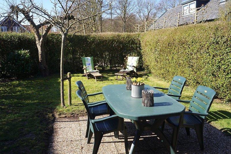 Der sonnige Garten mit Gartengruppe und Liegen