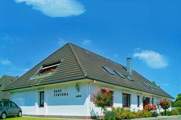 Ferienhaus Corinna à Büsum - Image 1