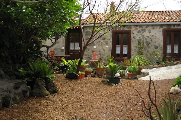 Hostel Las Flores à El Tanque - Image 1