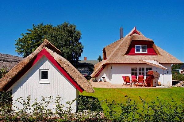 Ferienhaus Dietzel  à Zempin - Image 1
