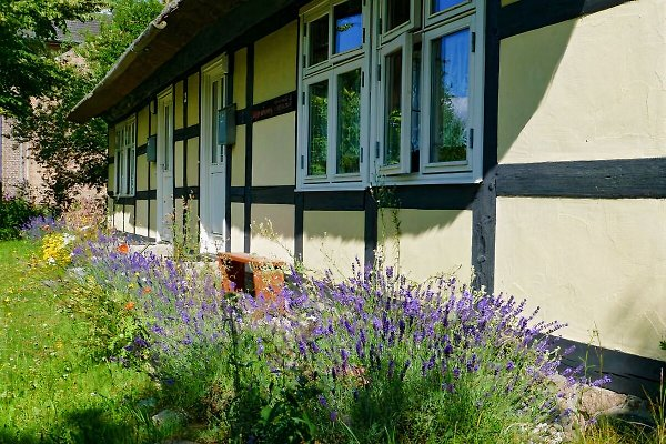 FeWo im Fachwerkhaus in Meiersberg - immagine 1