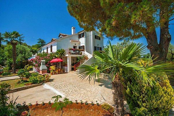 Casa Bizzarra à Rovinj - Image 1