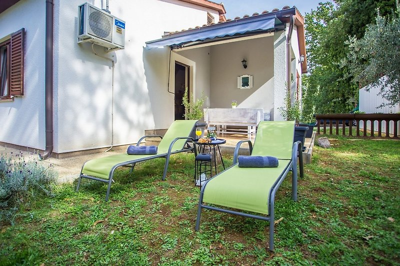 Garden with sun loungers