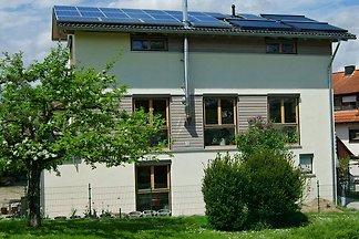 FeWo Sonnengrün Steißlingen Top
