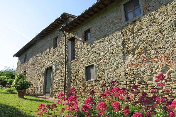 """Campolungo """"Lo Studio"""" per 2 pers. in Greve in Chianti - immagine 1"""