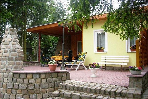 Ferienhaus mit großer Freiterrasse