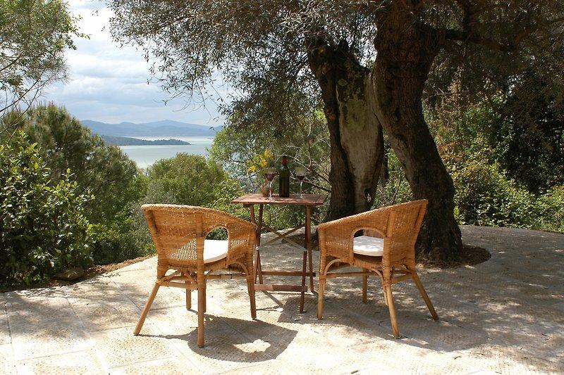 Idyllische Olivenbaumterrasse (Wohnung Vera)