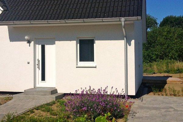 Ferien-Apartment 1 à Patzig - Image 1