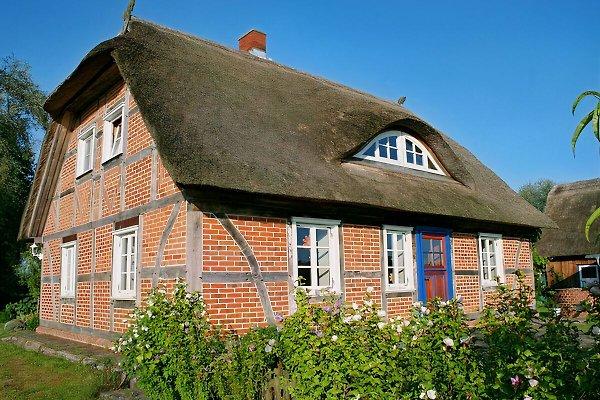 Ferienhaus Elbewarft in Lenzerwische - immagine 1