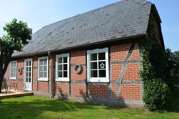 Vakantiehuis in Lenzerwische - Afbeelding 1