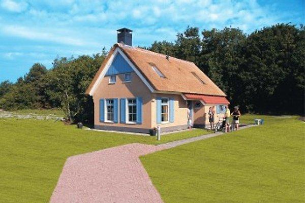 Kustpark Texel in De Koog - immagine 1