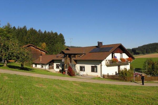 Casa vacanze in Cham - immagine 1