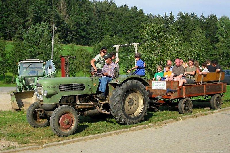 Lustige Traktor Kutschenfahrt für Gruppen - Rund um den Bauernhof