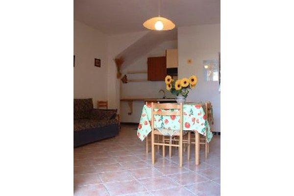 villa 700mt to the beach in San Teodoro - Bild 1