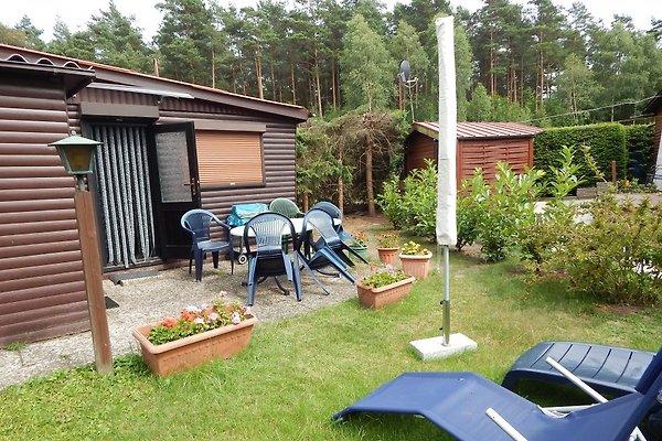 Ferienhaus Walbe/Scandinavia in Soltau - immagine 1