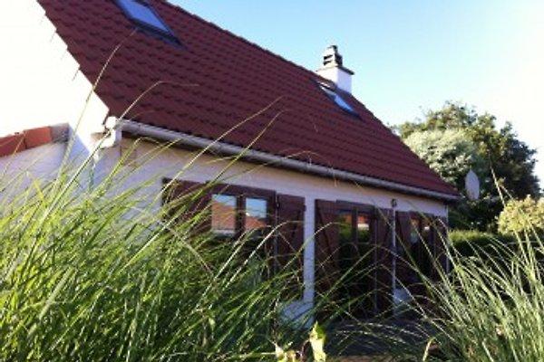 Strandnahes Ferienhaus in Bredene - Bild 1