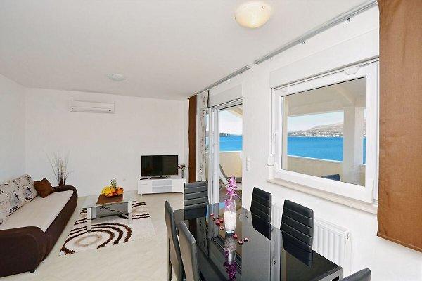 Appartement de luxe Palm Beach 2 à Okrug Gornji - Image 1