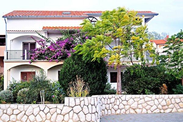Apartment Haus Ivanic in Lopar - Bild 1