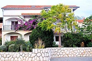 Apartamento Haus Ivanic