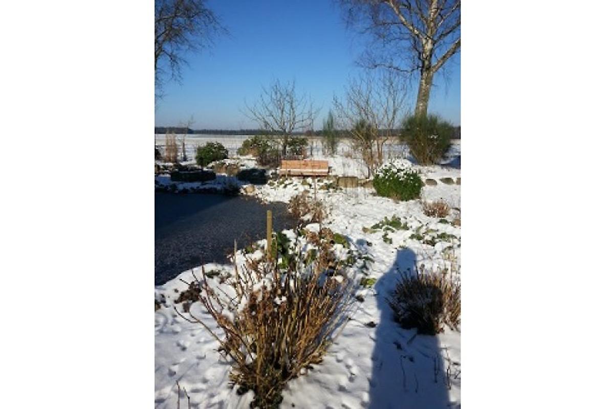 Timmerloher weg 17 ferienwohnung in schneverdingen mieten for Gartenteich im winter