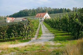 Apfelbauernhof Kober