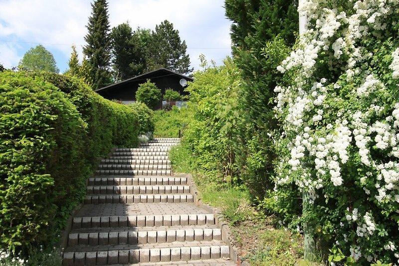 Treppenaufgang für Gehbehinderte nicht geeignet