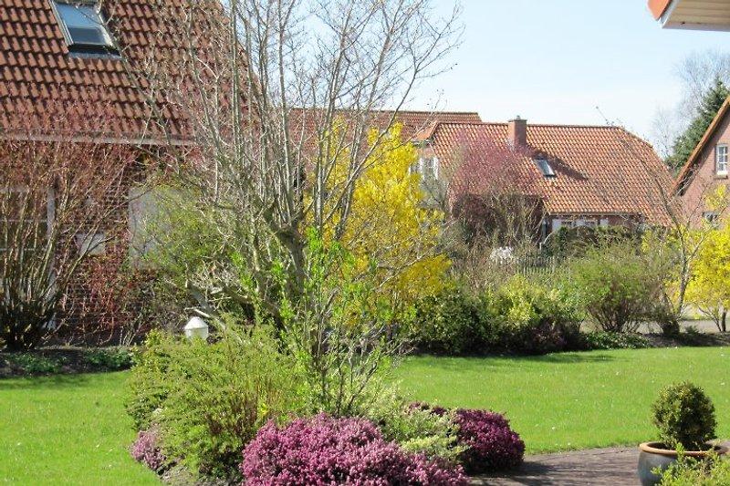 Garten Ferienhaus Norddeich