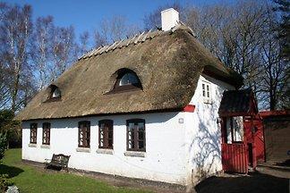 Ferienhaus in Ebberup