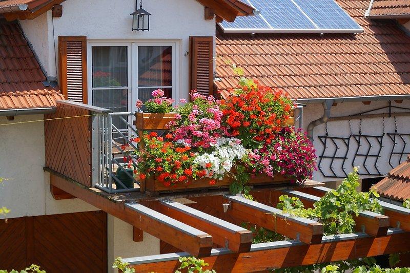 Balkon Ferienwohnung Goldschmied