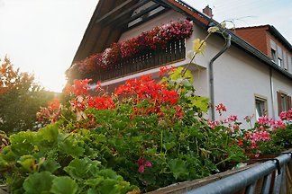 Wein- und Gästehaus Im Linsenb