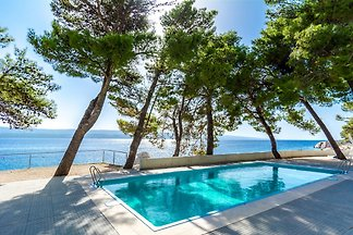 Beautiful Villa Atrium with pool