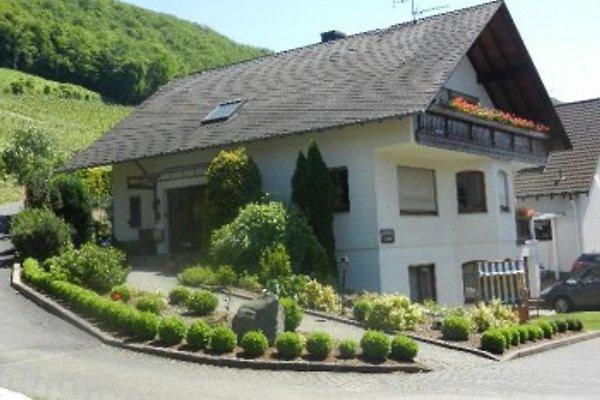 Gästehaus Probst en Alken - imágen 1