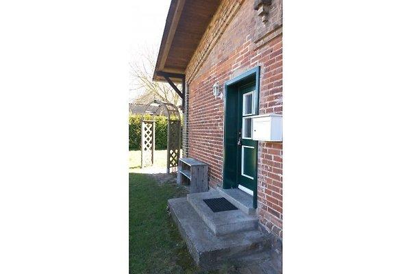 Haus Schwalbennest en Dahmen - imágen 1