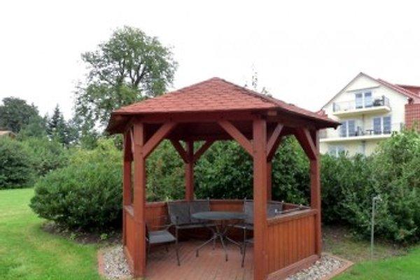 Garten am Pavillon