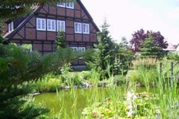 Ferienwohnung in Vogelsang Warsin am Stettiner Haff Hausansicht mit Teich