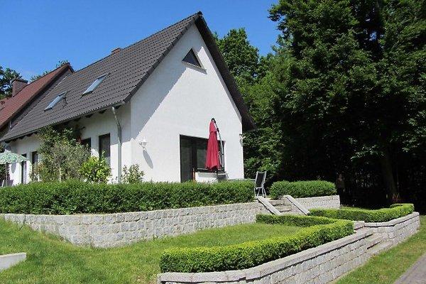 Ferienhaus am Petersdorfer See en Petersdorf - imágen 1